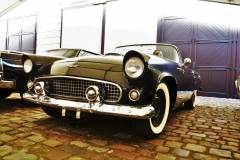 nm-classic-cars-classicmotoshow2016-009