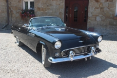 ford-thunderbird-1955-003