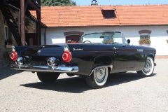 ford-thunderbird-1955-009