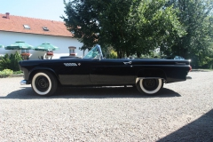 ford-thunderbird-1955-013