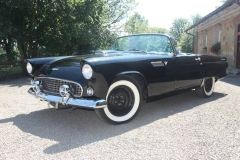 ford-thunderbird-1955-014