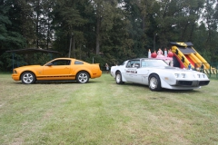 nm-classic-cars-piknik2016-001